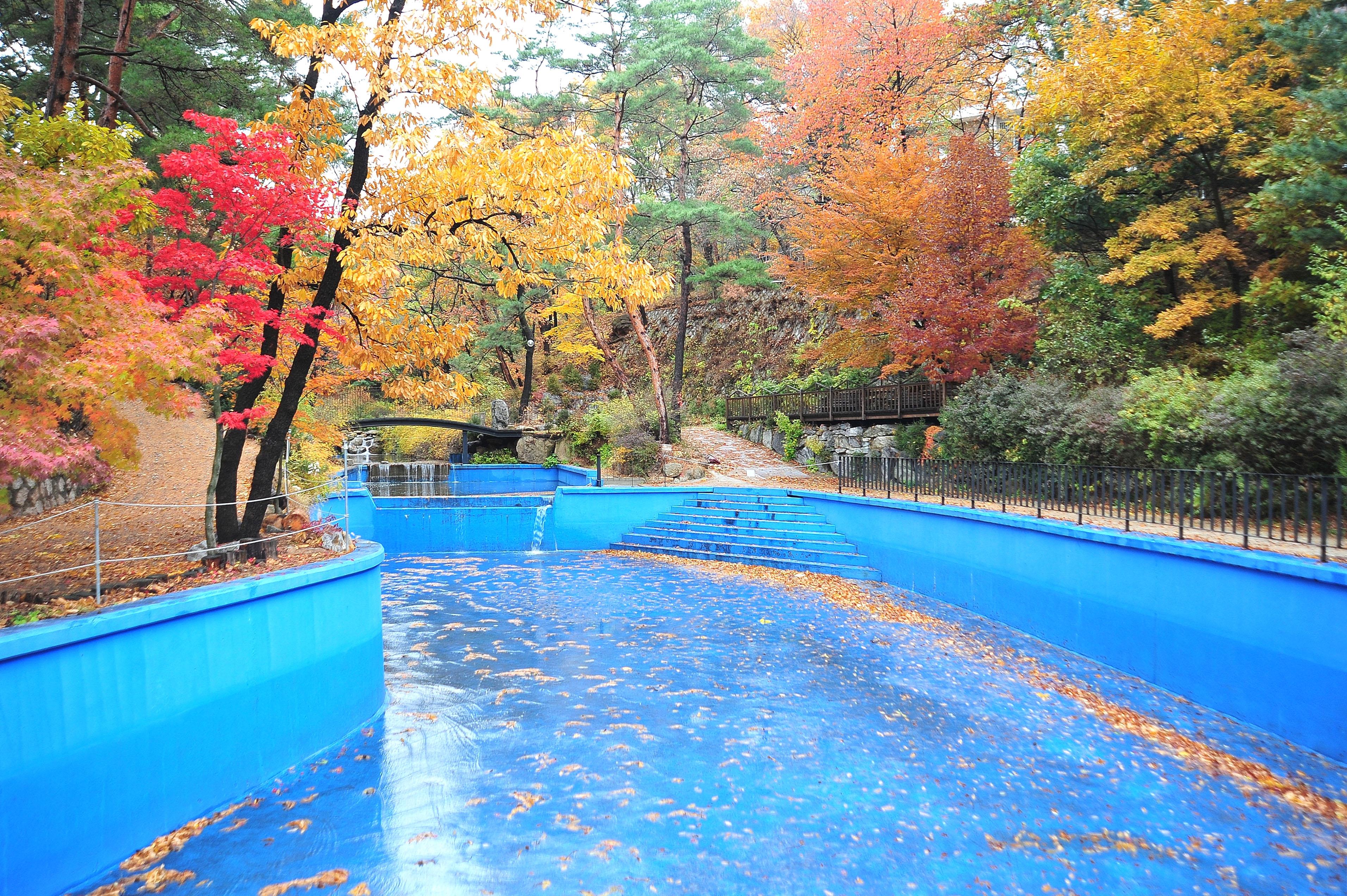 팀수양관 수영장/가을