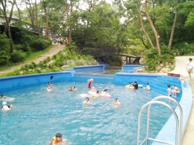 팀수양관 수영장/여름